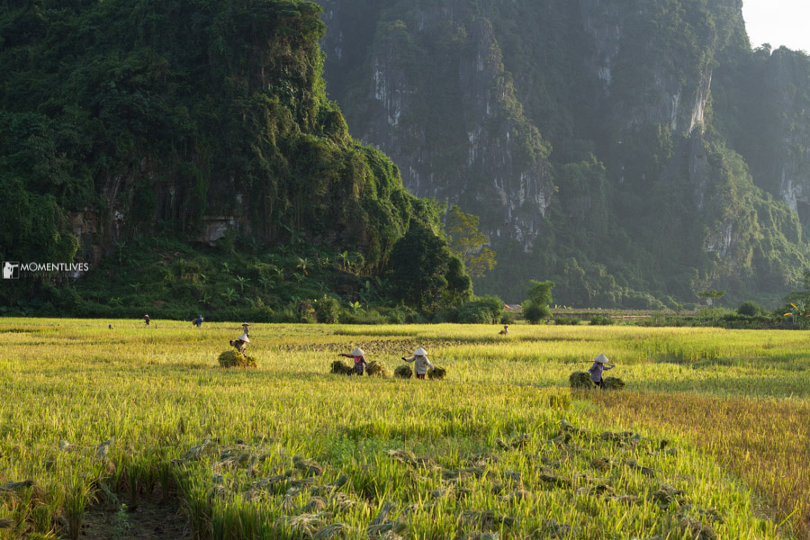 Photography tour to Pu Luong mountains and rice fields